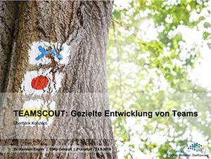 TEAMSCOUT-Methodik